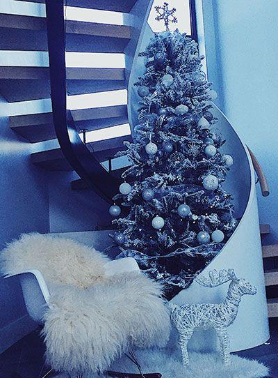 Alaskan snow tree my Winter Wonderland
