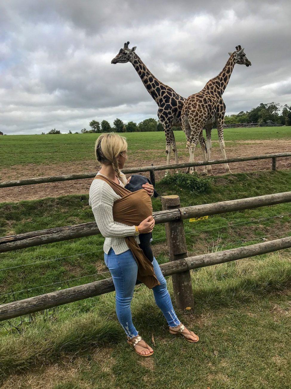 mother and baby watching giraffe